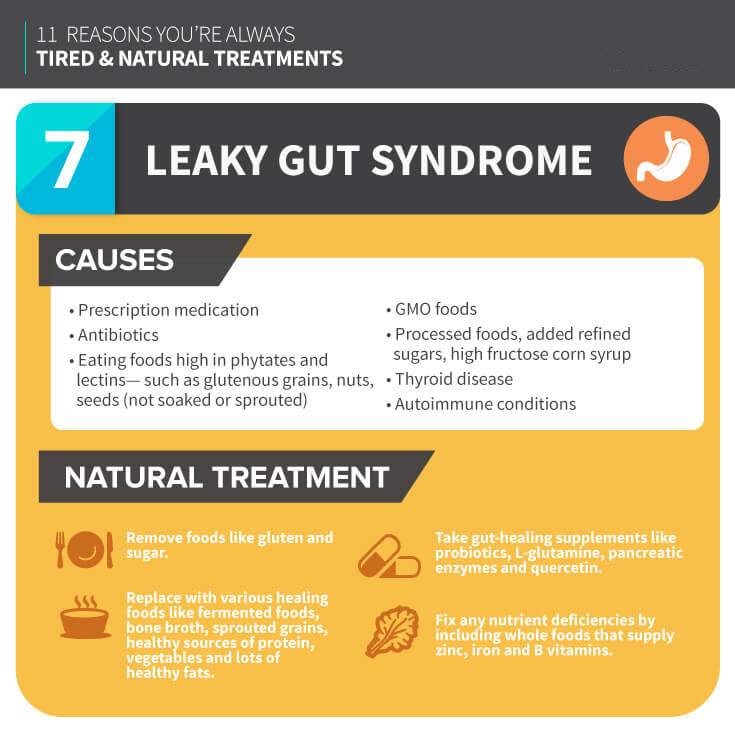 Leaky Gut Syndrome - MKexpress.net