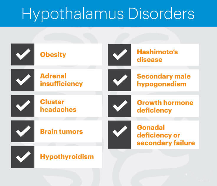Hypothalamus disorders - MKexpress.net