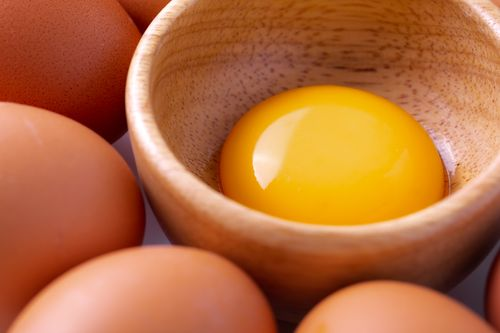 Egg yolk boost metabolism - MKexpress.net