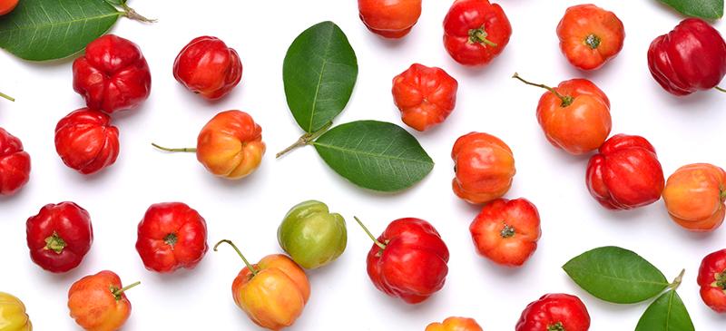 Acerola cherry - MKexpress.net
