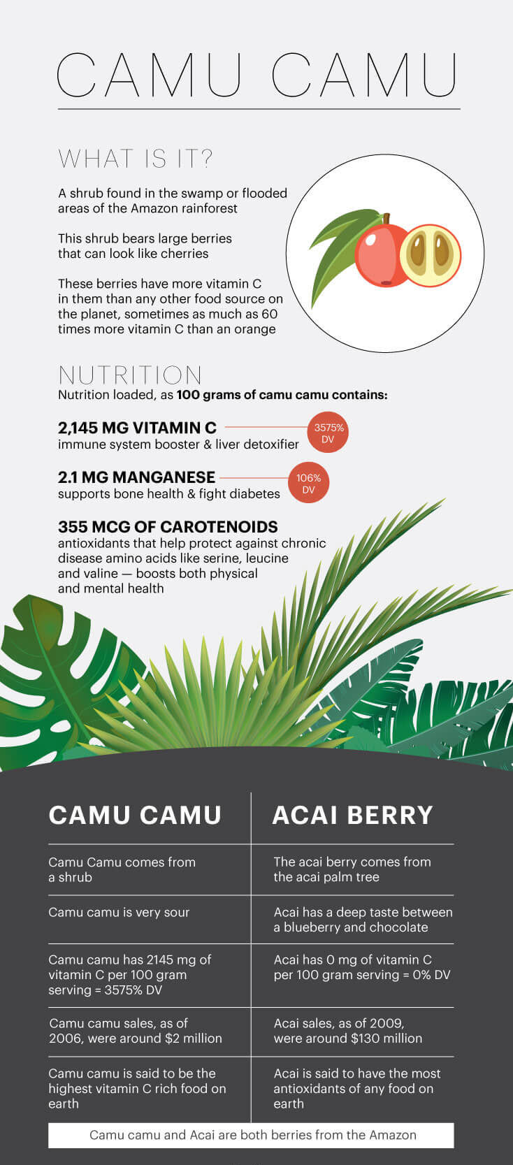 What is camu camu? - MKexpress.net
