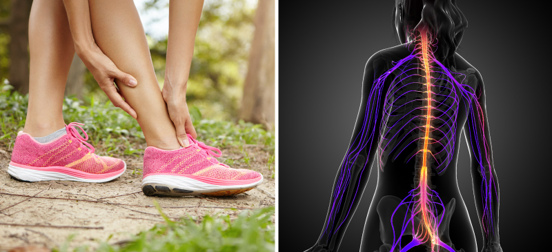 Charcot-Marie-Tooth disease - MKexpress.net