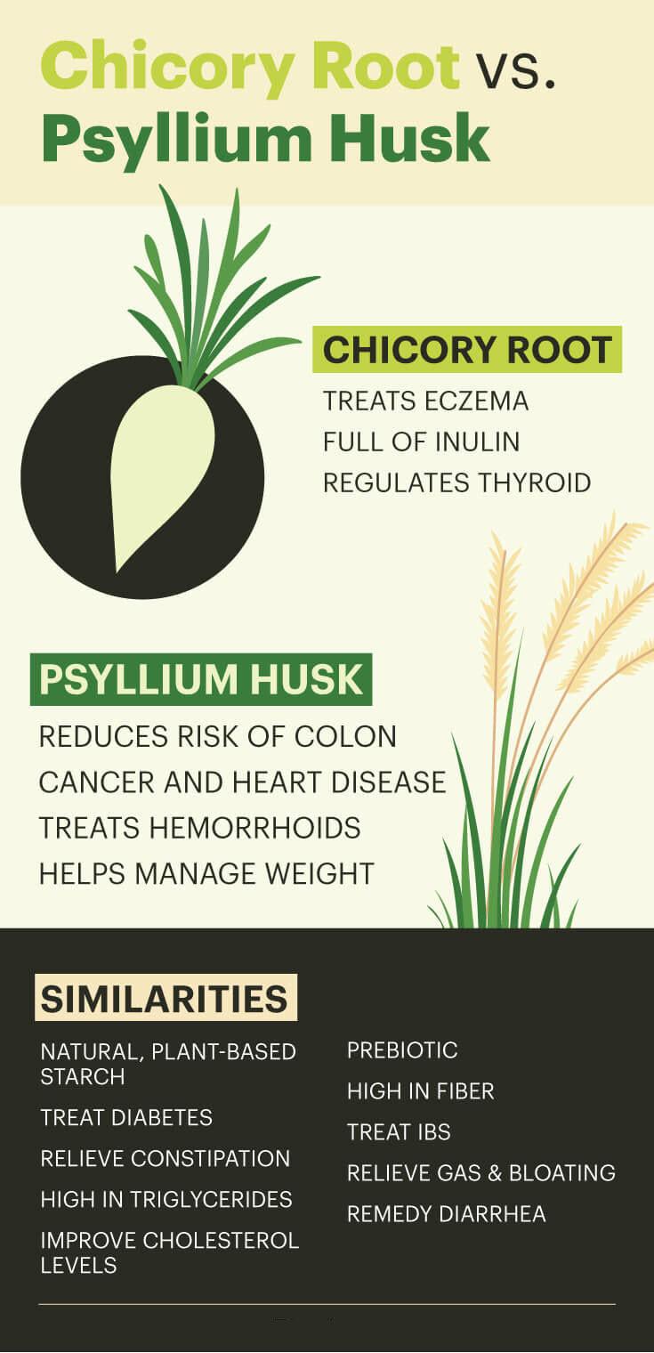 Chicory root vs. psyllium husk
