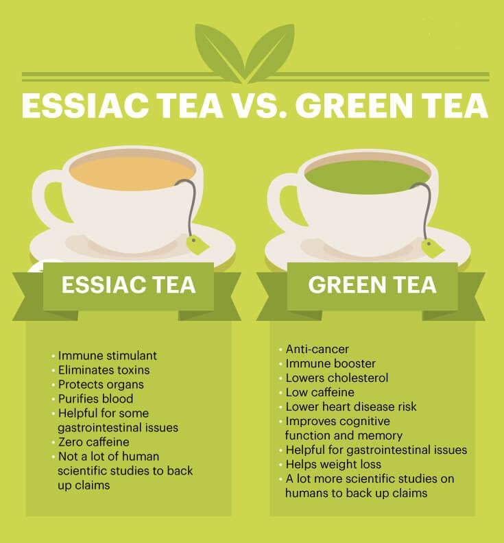 Essiac tea vs green tea - MKexpress.net