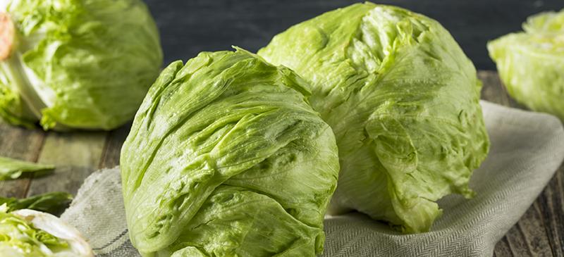 Iceberg lettuce - MKexpress.net