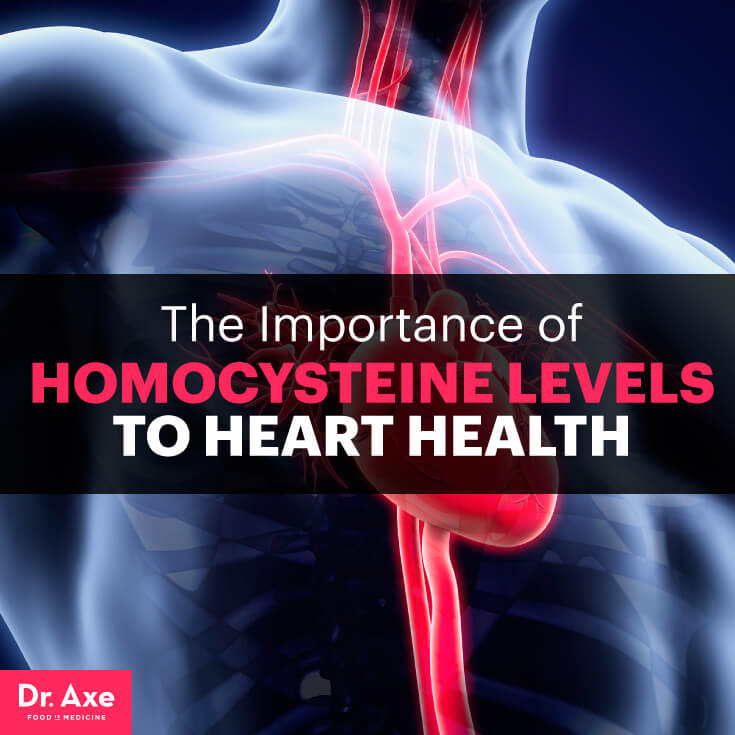 Homocysteine levels - Dr. Axe