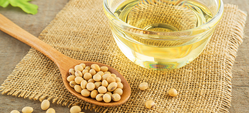 Is soybean oil bad for you? - MKexpress.net