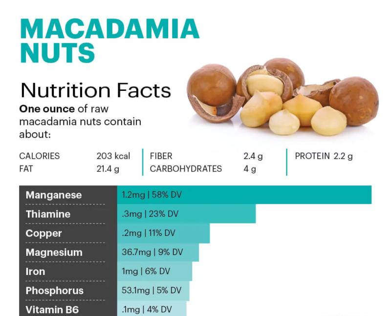 Macadamia nuts - MKexpress.net