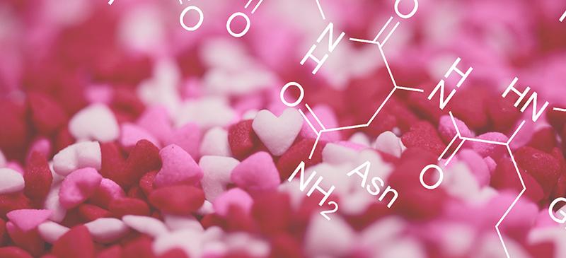 Oxytocin - MKexpress.net