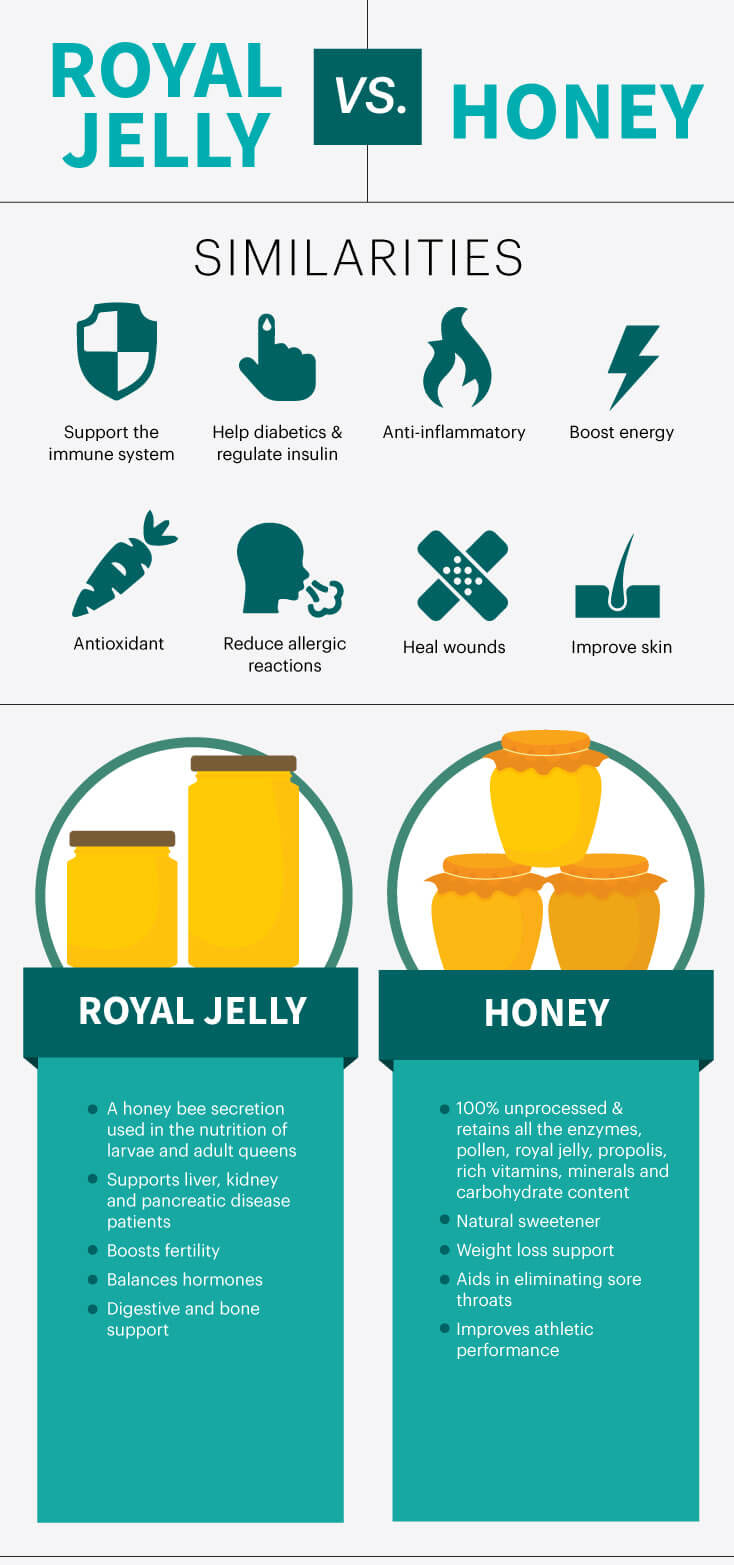 Royal jelly vs. honey - MKexpress.net