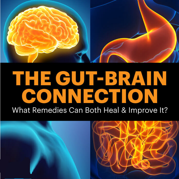 the-gut-brain-connection-what-remedies-can-both-heal-improve-it