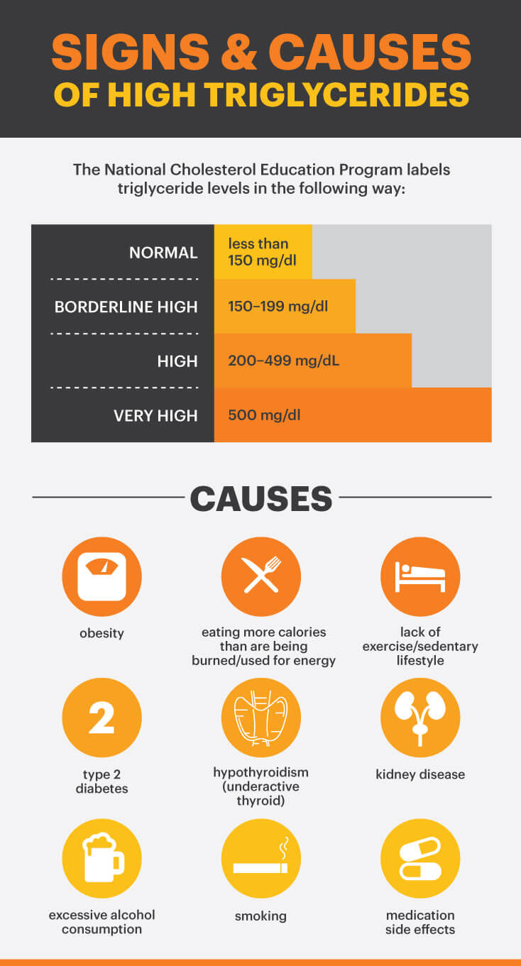 Signs and causes of high triglycerides - MKexpress.net