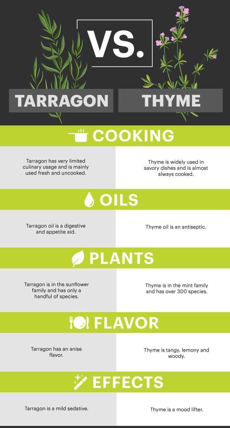 Tarragon vs. thyme