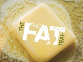 FATS IN YOUR BODY